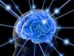 Укрепление памяти и улучшение мозговой деятельности